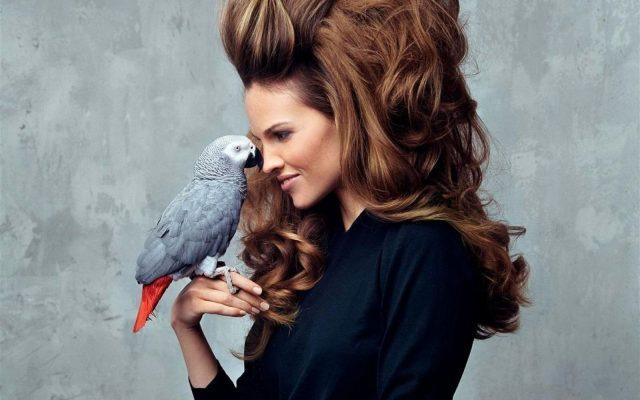 5 лучших домашних масок против выпадения волос